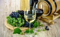 Verres de vin sur décor de tonneau et raisin